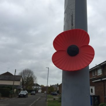 Poppies to remember Datchet's fallen soldiers